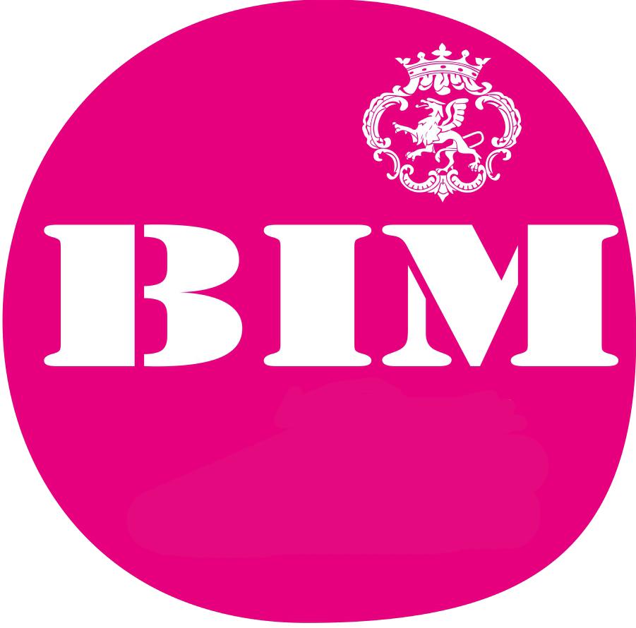 Brzeski Magazyn Informacyjny